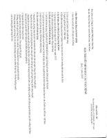 công ty cổ phần thủy điện thác mơ bản thuyết minh báo cáo tài chính quý 1 năm 2010
