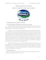 phân tích báo cáo tài chính công ty vinamilk giai  đoạn 2011 2013