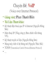 chuyên đề voip voice over internet protocol