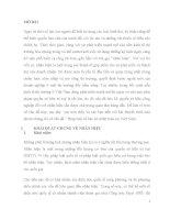 Pháp luật về bảo hộ nhãn hiệu tại Việt Nam