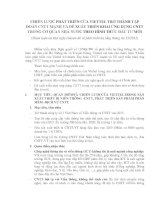 CHIẾN LƯỢC PHÁT TRIỂN CỦA VIETTEL TRỞ THÀNH TẬP ĐOÀN CNTT MẠNH VÀ ĐỀ XUẤT TRIỂN KHAI ỨNG DỤNG CNTT TRONG CƠ QUAN NHÀ NƯỚC THEO HÌNH THỨC ĐẦU TƯ MỚI