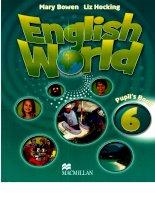 english world 6 pupils book