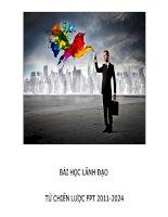 Tiểu luận môn lãnh đạo BÀI HỌC LÃNH ĐẠO TỪ CHIẾN LƯỢC FPT 20112024