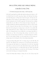 Tiểu luận môn Quản lý chuỗi cung ứng ĐO LƯỜNG HIỆU QUẢ HOẠT ĐỘNG CHUỖI CUNG ỨNG