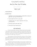 Giới thiệu về quá trình hình thành và phát triển của công ty cổ phần đúc tân long CONSTREXIM