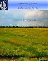 Báo cáo thực tập Sản xuất ethanol sinh học từ rơm rạ (thuyết trình)