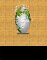 Tiểu luận Tài Chính Tiền Tệ : QUY TRÌNH GIAO DỊCH, MỞ TÀI KHOẢN TẠI CÁC CTCK: SSI, HSC, BẢN VIỆT, BSC, BVS, KLS.ĐÁNH GIÁ ƯUNHƯỢC ĐIỂM