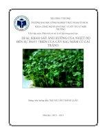 Đề tài  khảo sát ảnh hưởng của nhiệt độ đến sự phát triển của cây rau mầm củ cải trắng