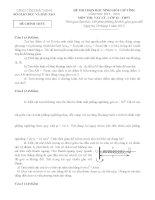 Đề thi học sinh giỏi lớp 12 tỉnh Bắc Ninh năm 2013 môn Vật lý