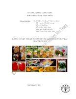 Hướng dẫn kỹ thuật: sản xuất các sản phẩm tươi từ rau quả nhiệt đới