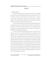 Ngôn từ trong tiểu thuyết Nỗi buồn chiến tranh của Bảo Ninh