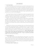 Một số giải pháp nhằm nâng cao hiệu quả hoạt động giao nhận hàng hóa của Chi Nhánh Tổng Công ty Cổ phần Dịch vụ Kỹ thuật Dầu khí Việt Nam – Công Ty Cảng Dịch Vụ Dầu Khí PTSC