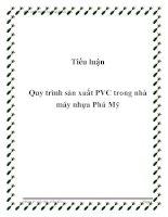 Tiểu luận quy trình sản xuất PVC trong nhà máy nhựa phú mỹ