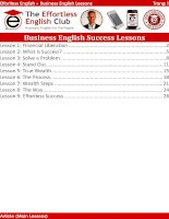 Business english lessons v2