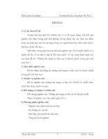 Những nội dung cơ bản của lý thuyết chuỗi trong giải tích toán học