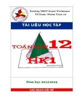 tài liệu học tập môn toán lớp 12 học kỳ 1 - thpt ernst thalmann