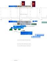 Tạo dòng, biểu hiện và tinh sạch protein IFNγ người trong hệ thống biểu hiện E. coli ở quy mô phòng thí nghiệm