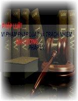 Bài thuyết trình pháp luật đại cương vi phạm pháp luật và trách nhiệm pháp lý