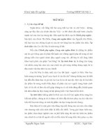 Tìm hiểu giá trị nội dung và nghệ thuật trọng tự tình khúc của Cao Bá Nhạ