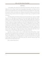 báo cáo thực tập CÔNG TY CP KHOA học và CÔNG NGHỆ môi TRƯỜNG hà nội