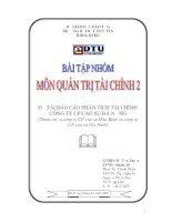 Bài tập nhóm môn quản trị tài chính báo cáo phân tích tài chính công ty cao su đà nẵng
