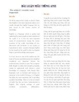Bài luận mẫu tiếng anh song ngữ