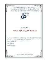 báo cáo thực tập tại công ty TNHH dịch vụ phần mềm nam việt