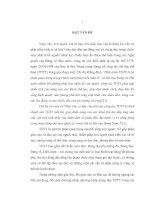 Lựa chọn bài tập phát triển sức mạnh bột phát nâng cao hiệu quả giậm nhảy trong nhảy xa ưỡn thân cho nam học sinh khối 11 trường THPT Nguyễn Viết Xuân, Vĩnh Tường, Vĩnh Phúc