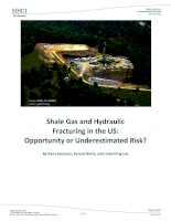 Shale gas and hydraulic fracturing in the US