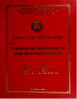 Áp dụng mô hình Camel trong phân tích tài chính tại Ngân hàng Đầu tư và Phát triển Việt Nam
