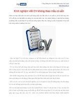 Kinh nghiệm viết CV không theo mẫu có sẵn