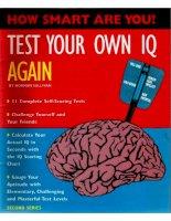 Test your own IQ again