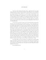 Tiểu luận nghiên cứu vấn đề tích luỹ tư bản