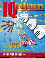 IQ Brainteasers over 300 brainteasing puzzles