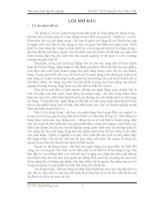 THỰC TRẠNG tín DỤNG TRUNG  dài hạn tại CHI NHÁNH NGÂN HÀNG đầu tư và PHÁT TRIỂN QUẢNG NGÃI