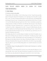 Tiểu luận sản xuất Phân bón vi sinh từ nấm trichoderma words