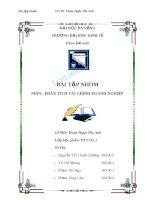 Bài tập nhóm môn Phân tích tài chính doanh nghiệp: Phân tích tài chính công ty cổ phần Chế biến gỗ Thuận An