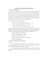 Đề tài tổng quan về báo cáo tài chính