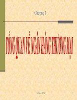 SLIDE chương 1 tổng quan về ngân hàng thương mại