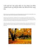 Viết một bài văn ngắn diễn tả cảm nhận của Hữu Thỉnh trước sự chuyển biến của đất trời lúc sang thu - văn mẫu