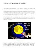 Cảm nghĩ về đêm trăng Trung thu - văn mẫu