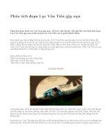Phân tích đoạn Lục Vân Tiên gặp nạn - văn mẫu