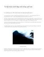 Tả lại một cảnh đẹp núi rừng quê em - văn mẫu