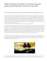 Phân tích đoạn trích Hai cây phong trong tác phẩm Người thầy đầu tiên của Ai-ma-tốp - văn mẫu