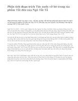 Phân tích đoạn trích Tức nước vỡ bờ trong tác phẩm Tắt đèn của Ngô Tất Tố - văn mẫu