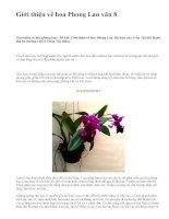 Giới thiệu về hoa Phong Lan văn 8 - văn mẫu