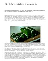 Giới thiệu về chiếc bánh trưng ngày tết - văn mẫu