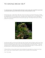 Tả vườn hoa nhà em văn 5 - văn mẫu