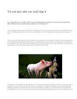 Tả con lợn nhà em nuôi lớp 4 - văn mẫu