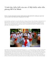 Trình bày hiểu biết của em về Đội thiếu niên tiền phong Hồ Chí Minh - văn mẫu